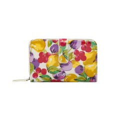 Small Painted Fruit Folded Zip Wallet